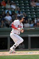 Right fielder Tyler Esplin (25) of the Greenville Drive bats in a game against the Hickory Crawdads on Tuesday, April 30, 2019, at Fluor Field at the West End in Greenville, South Carolina. Hickory won, 5-4. (Tom Priddy/Four Seam Images)