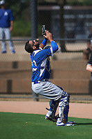 Los Angeles Dodgers Julian Leon (50) during an instructional league game against the Cincinnati Reds on October 20, 2015 at Cameblack Ranch in Glendale, Arizona.  (Mike Janes/Four Seam Images)