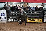 ABBI - Decatur, TX - 6.3.2016 - Derby