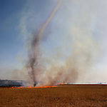 Fire whorl, Lyon County, Kansas, 1994