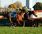 Daisy Devine (inside), a daughter of Kafwain, wins the G3 Cardinal H. with jockey Calvin Borel, over Julie's Love (GB) (outside) and jockey Joseph Rocco, Jr. for owner James M. Miller and trainer Andrew McKeever.November 10, 2012