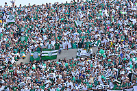 SÃO PAULO, SP, 06 DE MAIO DE 2012 - FINAL DO CAMPEONATO PAULISTA - GUARANI x SANTOS: Torcida do Guarani durante partida Guarani x Santos, primeira partida da final do Campeonato Paulista no Estádio do Morumbi. FOTO: LEVI BIANCO - BRAZIL PHOTO PRESS