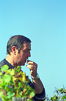 A man standing in the vineyard putting a grape in his mouth to taste it to verify the ripeness of the fruit against a blue sky  Chateau Caillou, Grand Cru Classe, Barsac, Sauternes, Bordeaux, Aquitaine, Gironde, France, Europe
