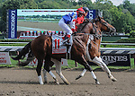 Runhappy (no. 11) ridden by Edgar Prado and trained by Maria Borell, wins the 32nd running of the grade 1 King's Bishop Stakes for three year olds on August 29, 2015 at Saratoga Race Course in Saratoga Springs (Sophie Shore/Eclipse Sportswire)