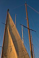 Europe/France/Provence-Alpes-Côte d'Azur/83/Var/ Saint-Tropez: Détail des voiles d'un voilier sur le port
