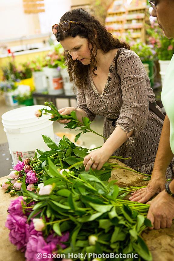 Young woman selecting peony cut flowers at flower farmer Lisa Ziegler Gardeners Workshop