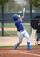 Jeter Downs - Los Angeles Dodgers 2019 spring training (Bill Mitchell)