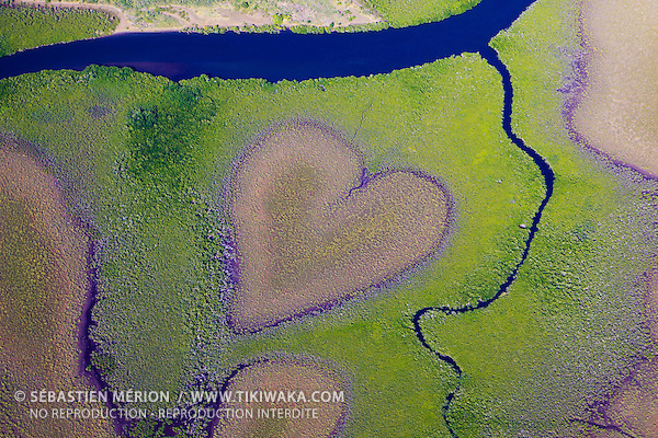 Coeur de Voh, formé par la mangrove, côte Ouest de la Nouvelle-Calédonie