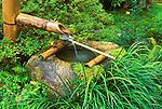 Spring for Tea Ceremony, Sanzen-in Temple, Ohara, Kyoto, Japan