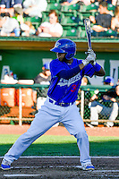 Keibert Ruiz (31) of the Ogden Raptors at bat against the Missoula Osprey in Pioneer League action at Lindquist Field on July 14, 2016 in Ogden, Utah. Ogden defeated Missoula 10-4. (Stephen Smith/Four Seam Images)