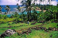 Kee beach with Ka ulu paoa heiau, on the north shore of Kauai. Ka ulu paoa is the place where Pele, Lohiau and Paoa practiced hula in Hawaiian history. A shrine to Laka, the goddess of hula, is located in a cleft in the hillside behind the platform.