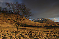 Beinn an Dothaidh, Bridge of Orchy, Argyll & Bute, Southern Highlands<br /> <br /> Copyright www.scottishhorizons.co.uk/Keith Fergus 2011 All Rights Reserved