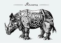 Old-fashioned animal illustration on grey background