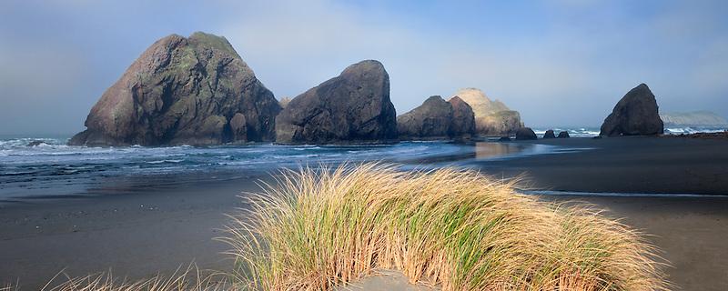 Fog and dune grass at Cape Sabastian. Oregon