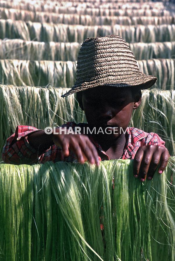 Criança trabalhando em colheita de sisal. Bahia. 1987. Foto de Salomon Cytrynowicz...