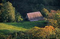 Europe/France/Auvergne/15/Cantal/Parc Naturel Régional des Volcans/Massif du Puy Mary (1787 mètres) /Vallée de Mandailles: Paturages et buron