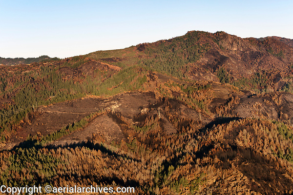 Powerlines traverse the mountainside burned by the Nuns Fire in the Mayacama Mountains, Sonoma County, California, northern California wildfires, 2017.