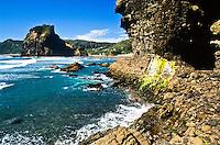 Piha Beach - West Auckland, New Zealand
