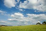 Europa, DEU, Deutschland, Hessen, Rhoen, Hessische Rhoen, Landschaft, Agrarlandschaft, Feld, Himmel, Wolken, Kategorien und Themen, Natur, Umwelt, Landschaft, Landschaftsfotos, Landschaftsfotografie, Landschaftsfoto, Tourismus, Touristik, Touristisch, Touristisches, Urlaub, Reisen, Reisen, Ferien, Urlaubsreise, Freizeit, Reise, Reiseziele, Ferienziele<br /> <br /> [Fuer die Nutzung gelten die jeweils gueltigen Allgemeinen Liefer-und Geschaeftsbedingungen. Nutzung nur gegen Verwendungsmeldung und Nachweis. Download der AGB unter http://www.image-box.com oder werden auf Anfrage zugesendet. Freigabe ist vorher erforderlich. Jede Nutzung des Fotos ist honorarpflichtig gemaess derzeit gueltiger MFM Liste - Kontakt, Uwe Schmid-Fotografie, Duisburg, Tel. (+49).2065.677997, ..archiv@image-box.com, www.image-box.com]