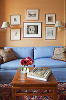 Blue couch in classic living room