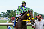 August 02 2015: Wildcat Red with Paco Lopez win the Teddy Drone Stakes for 3-year olds & up, going 6 furlongs at Monmouth Park.  Trainer Jose Garoffalo. Owner Honors Stable Corp. Sue Kawczynski/ESW/CSM