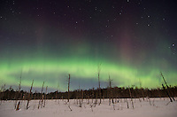 A brilliant auroras band stretching across the frozen Upper Peninsula landscape during a bright moon. Rural Marquette County, MI