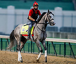 September 1, 2020: Enforceable exercises as horses prepare for the 2020 Kentucky Derby and Kentucky Oaks at Churchill Downs in Louisville, Kentucky. The race is being run without fans due to the coronavirus pandemic that has gripped the world and nation for much of the year. Scott Serio/Eclipse Sportswire/CSM