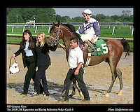 As seen in the Arabian Horse Galleries exhibit at The Kentucky Horse Park<br /> <br /> RW Country Gent  .The 2003 UAE Equestrian and Racing Federation Stakes Grade 1