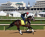 April 19, 2014 Ride On Curlin gallops at Churchill Downs.  He is trained by William G. Gowan and will be ridden by Calvin Borel in the Kentucky Derby.