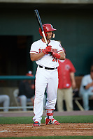 Harrisburg Senators catcher Raudy Read (26) at bat during a game against the Bowie Baysox on May 16, 2017 at FNB Field in Harrisburg, Pennsylvania.  Bowie defeated Harrisburg 6-4.  (Mike Janes/Four Seam Images)