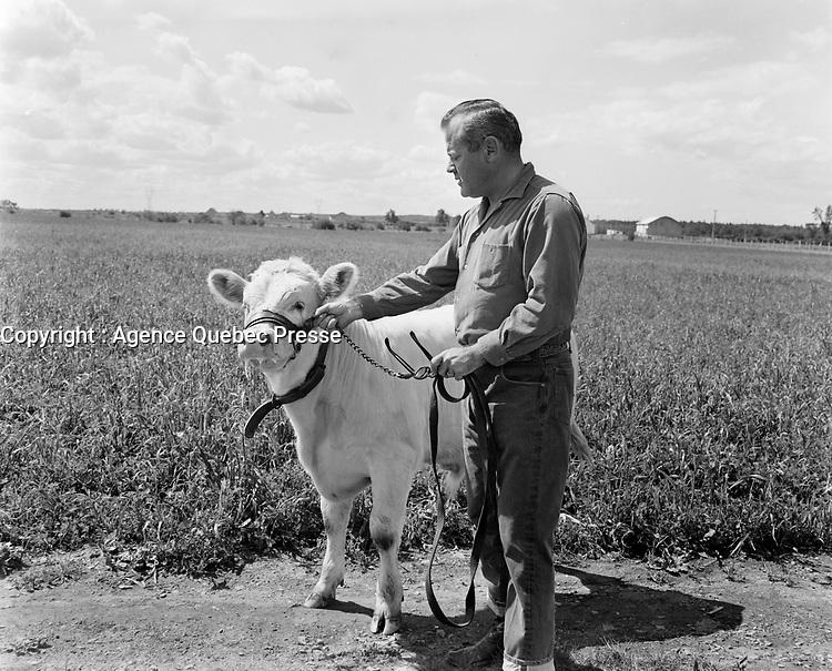 Fermier et sa vache, pres de Québec, date inconnue