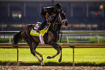 April 29, 2021: Bourbonic gallops in preparation for the Kentucky Derby at Churchill Downs in Louisville, Kentucky on April 29, 2021. EversEclipse Sportswire/CSM