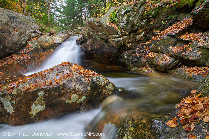 Talford Brook Cascades on Talford Brook during the autumn months in Thornton, New Hampshire.