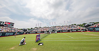 Den Bosch, Netherlands, 08 June, 2016, Tennis, Ricoh Open, Overall view of centercourt with Richel Hogenkamp<br /> Photo: Henk Koster/tennisimages.com