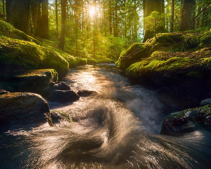 The setting sun illuminates a small cascade in the Mt. Hood wilderness, Oregon. <br /> Artist Edition 15/100 Limited