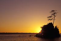 Sea stack in Tillamook Bay silhouetted against sunset, Garibaldi, Oregon