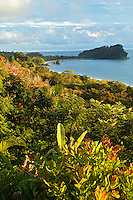 The view of Manuel Antonio National Park's Second Beach and Punta Catedral along with the Pacific Ocean, Manuel Antonio, Costa Rica