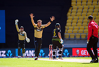 NZ's Tim Southee makes an early appeal during the 5th international men's T20 cricket match between the New Zealand Black Caps and Australia at Sky Stadium in Wellington, New Zealand on Sunday, 7 March 2021. Photo: Dave Lintott / lintottphoto.co.nz