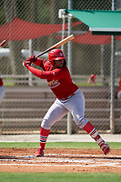 GCL Cardinals Freddy De Jesus (29) at bat during a Gulf Coast League game against the GCL Astros on August 11, 2019 at Roger Dean Stadium Complex in Jupiter, Florida.  GCL Cardinals defeated the GCL Astros 2-1.  (Mike Janes/Four Seam Images)