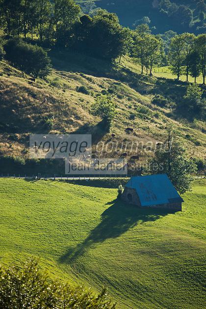 Europe/France/Auvergne/15/Cantal/Parc Naturel Régional des Volcans:Buron  dans  la vallée de Mandailles