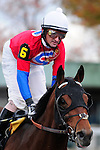 31 October 2009: Robby Albarado claimed top honors on Keeneland's final day of racing. Albarado was named leading rider for the fall meet over Julien Leparoux. Here is is pictured on number 6, Charlie Trumper.