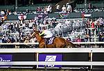 Monomy Girl (#10, Tapizar). Florent Geroux up, wind the BC Distaff at Keeneland 11.07.20. Winning Owner: Dubb, M., Monomoy Stables, LLC, The Elkstone Group, LLC (Stuart Grant) and Bethlehem Stables LLC <br /> Winning Trainer: Brad H. Cox