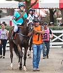 August 18, 2021: #7 Recent Revelations (IRE) ridden by Harrison Beswick in the post parade before the start of the Grade 1 Jonathan Sheppard Handicap at Saratoga Race Course in Saratoga Springs, N.Y. on August 18, 2021. <br /> Robert Simmons/Eclipse Sportswire/CSM