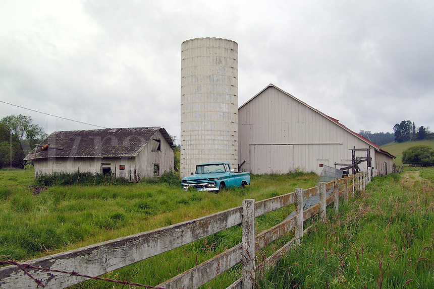 A barn, silo, old ramshakle utility building, a rail fence, and a blue pickup truck in Freestone, California