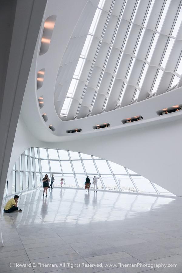 Musings On Calatrava Design 2, Milwaukee Art Museum