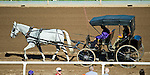ARCADIA, CA - NOV 04: A horse and buggy ride down the track at Santa Anita Park on November 4, 2016 in Arcadia, California. (Photo by Scott Serio/Eclipse Sportswire/Breeders Cup)