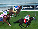 January 1, 2012.Bauble Queen ridden by Garrett Gomez crossing the finish line and winning the Robert J. Frankel Stakes  at Santa Anita Park, Arcadia, CA