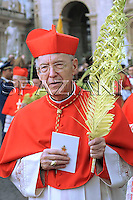 Cardinal Francesco Marchisano,Pope Benedict XVI benedicts faithful during an open-air Palm Sunday mass in St. Peter's square at the Vatican Sunday, March 16, 2008.