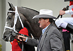 29 November 2008: Trainer Larry Jones leads Old Fashioned in the paddock before the grade 2 Remsen Stakes at Aqueduct Racetrack in Ozone Park, New York.