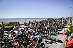 The peloton speed by during Stage 10 of Tour de France 2020, running 168.5km from Ile d'Oléron to Ile de Ré, France. 8th September 2020.<br /> Picture: ASO/Pauline Ballet | Cyclefile<br /> All photos usage must carry mandatory copyright credit (© Cyclefile | ASO/Pauline Ballet)